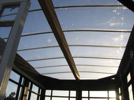Elaine's Greenhouse from inside