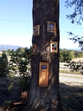 full tree 1